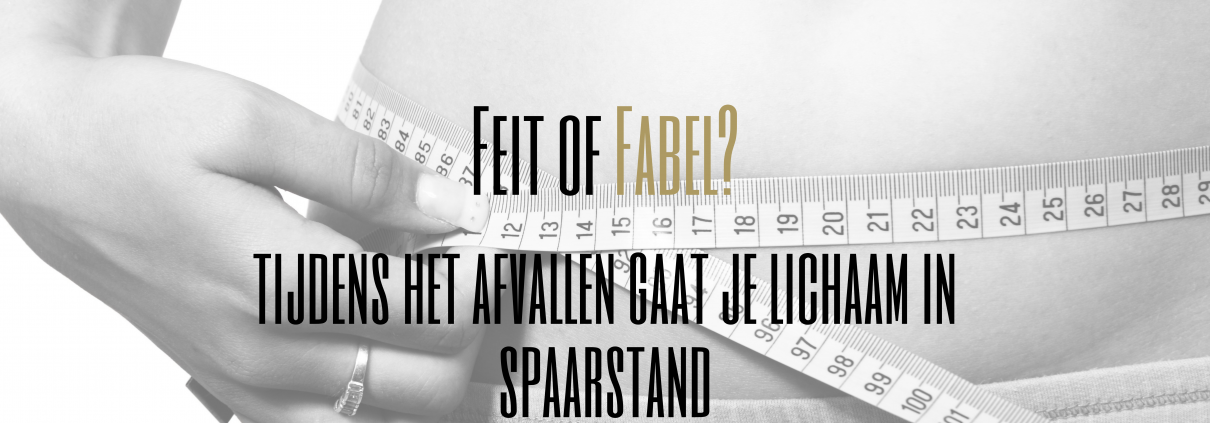 spaarstand